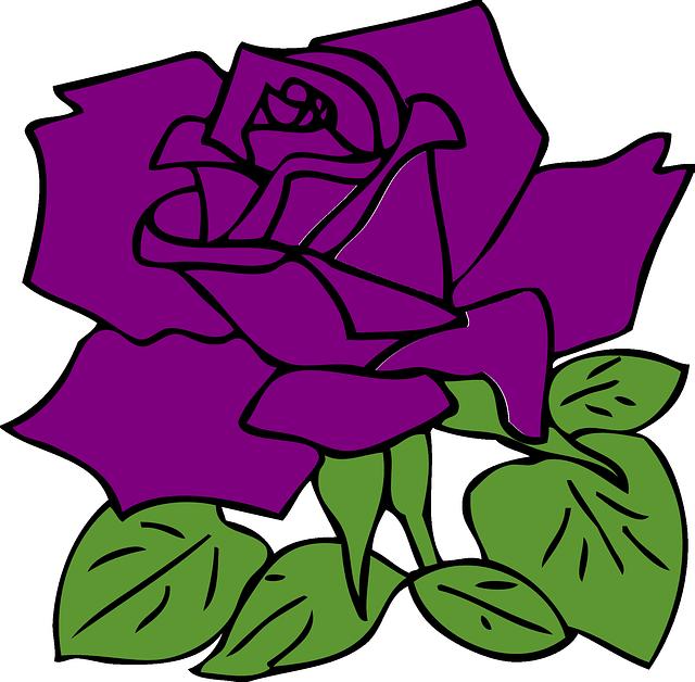 rose-304154_640